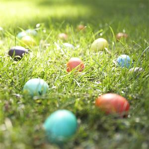Plastic, colorful Easter eggs in grass